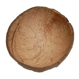 Coconut Shell 1/2  (150 -180 ml) | Zoo-Max
