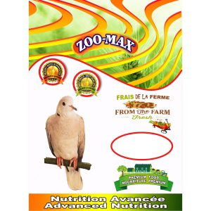 DOVE & TURTLEDOVE | Zoo-Max